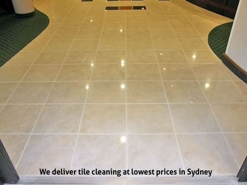 Tile and Grout Polishing Balmain