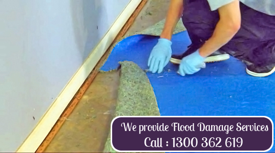 Carpet Damage Repair Nords Wharf