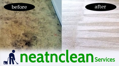 Carpet Remediation Service Petersham