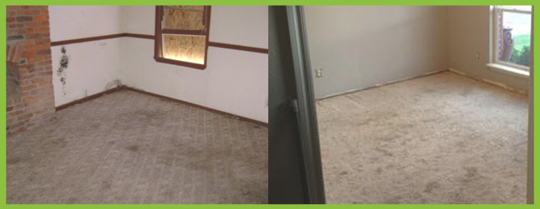 How to Remove Mildew and Musty Smell from Carpet