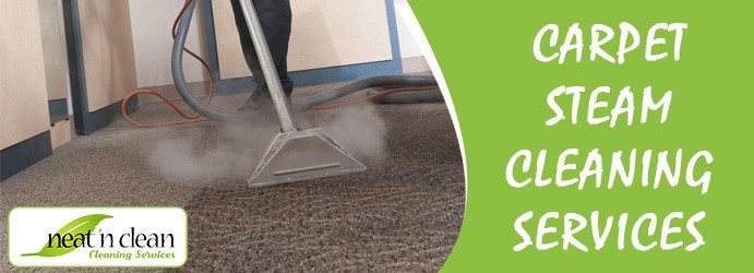 Carpet Steam Cleaning Clear Range