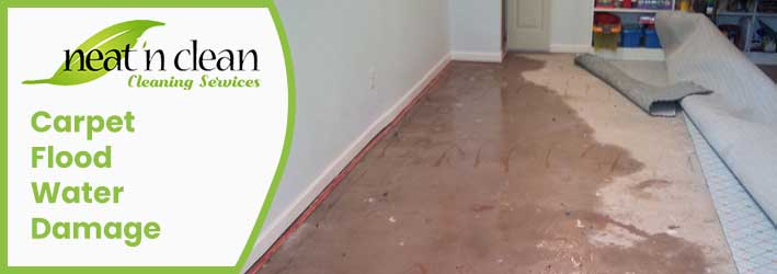 Carpet Flood Water Damage