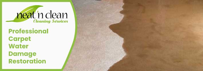 Professional Carpet Water Damage Restoration